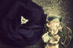 Vintage rose. photo Stock Images