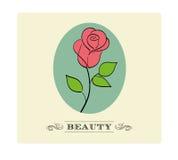 Vintage Rose Stock Photo