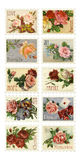 Vintage Rose Stamps With Sentiments Stock Images