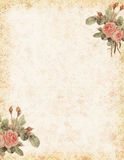 Vintage rose stationary with blank area for text royalty free illustration