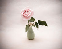Vintage rose in a vase Stock Photography
