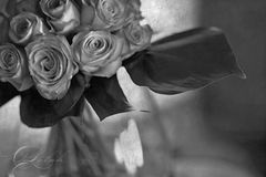 Vintage roses. Vintage flower bouquet of roses in black and white Stock Images