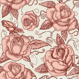 Vintage roses background Stock Photography