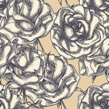 Vintage roses background Stock Images