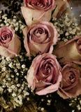 Vintage roses bouquet royalty free illustration