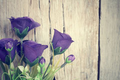 Vintage roses Royalty Free Stock Images