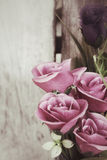 Vintage roses Royalty Free Stock Photo