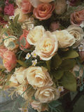 Vintage roses. Stock Photos