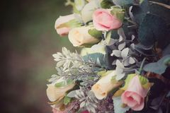 Vintage roses Royalty Free Stock Photography