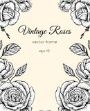 Vintage roses frame. Stock Photo
