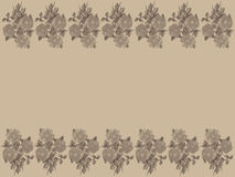 Vintage roses on ivory background Royalty Free Stock Photography