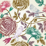 Vintage roses seamless pattern with birds. Stock Photography