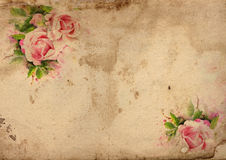 Vintage roses shabby chic background Stock Image