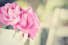 Vintage roses with vase Royalty Free Stock Image