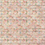 Vintage roses on wood background in pinks Stock Photo