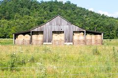Vintage Rural Hay Barn With Hay Stock Photo