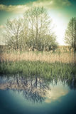 Vintage rural landscape with trees and sky reflection in lake. Stock Photo