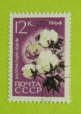 Vintage Russia postage stamp. A vintage Russia postage stamp, 1964 issues Stock Photos