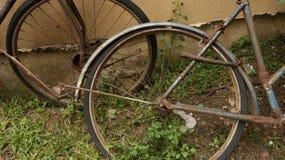 Vintage Rusty Bike Wheel en el jardín fotos de archivo libres de regalías