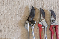 Vintage rusty pruning shears  - stock image Stock Photo