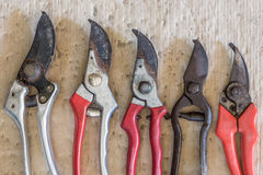 Vintage rusty pruning shears  - stock image Stock Photography