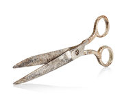 Vintage scissors close-up isolated Royalty Free Stock Image