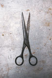 Vintage scissors Stock Images