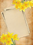 Vintage scrapbook background Royalty Free Stock Photography