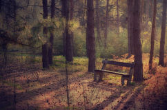 Vintage, scratched photo of a bench in the park Royalty Free Stock Photography