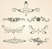 Vintage scrolls. Design elements and Royalty Free Stock Photography
