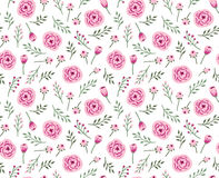 Vintage seamless background with field flowers and herbs. Vector floral pattern Stock Image