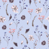 Vintage Seamless Background with Wildflowers Stock Photos