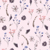 Vintage Seamless Background with Wildflowers Stock Photography