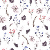 Vintage Seamless Background with Wildflowers Royalty Free Stock Image