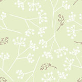 Vintage seamless floral pattern. Vintage seamless pattern with dandelions,  illustration Stock Photos