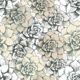 Vintage seamless flower pattern Royalty Free Stock Image