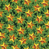 Vintage seamless holiday pattern with pine tree branches and stars.  Royalty Free Stock Photography