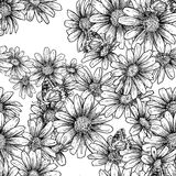 Vintage seamless monochrome pattern with daisies Royalty Free Stock Images