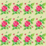 Vintage seamless pattern with beautiful roses. Vector illustration. Stock Photography