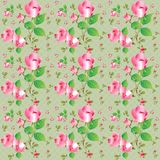 Vintage seamless pattern with beautiful roses. Vector illustration. Stock Image