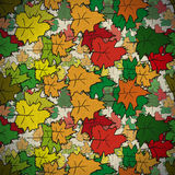 Vintage seamless pattern of colored maple Stock Photography
