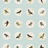 Vintage seamless pattern with cute little birds Royalty Free Stock Photography