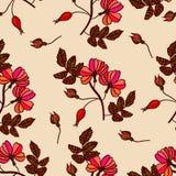 Vintage seamless pattern with eglantine Stock Photo