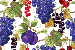 Vintage seamless pattern with fruits and berries. stock illustration