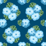 Vintage seamless pattern with geranium Royalty Free Stock Photography