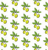 Vintage seamless pattern with green olives with vector illustration