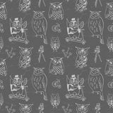 Vintage seamless pattern with Owls. Stock Image