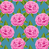 Vintage seamless pattern with peonies Royalty Free Stock Photo