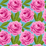 Vintage seamless pattern with peonies Stock Images