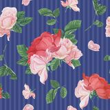 Vintage seamless pattern with pink roses and leaves Royalty Free Stock Images